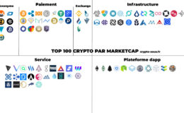top-100-crypto-repartition