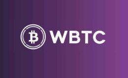 wbtc wrapped bitcoin