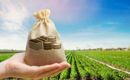 yield farming explication